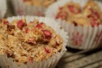 baked muffin large coconutrhubarb
