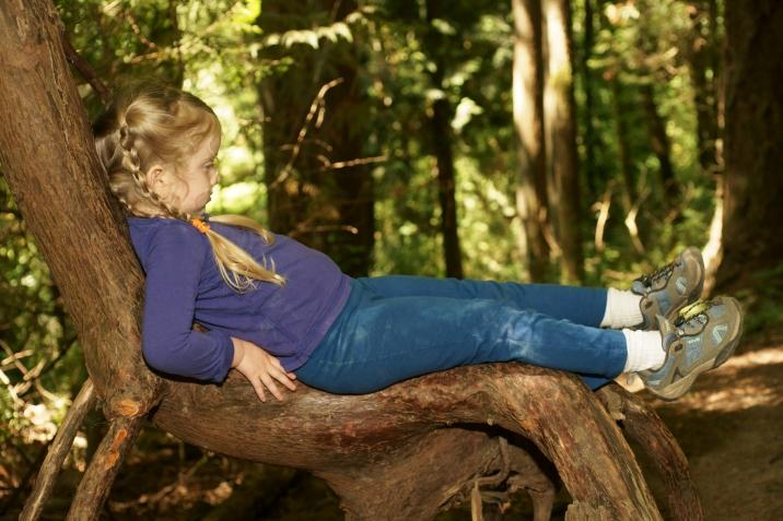 tree recliner